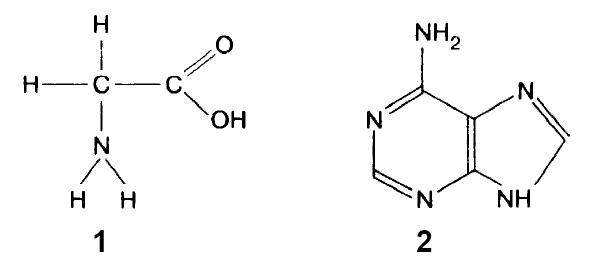 Аминокислота и нуклеотид